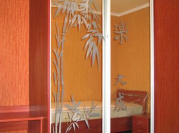 Шкаф-купе 010 с рисунком бамбука на створках