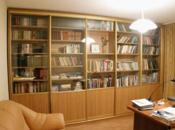 Библиотечный шкаф 001 для книг с распашными створками