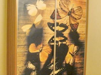 Шкаф-купе 034 двустворчатый с фотопечатью бабочек