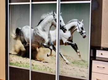 Шкаф-купе 047 трехстворчатый с фотопечатью лошадей