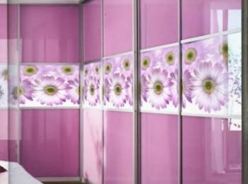 Шкаф-купе 003 с зеркальными дверями в розовом цвете и цветочной темой