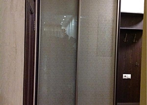 Шкаф-купе 098 темный с стеклами по всей высоте и боковыми полками